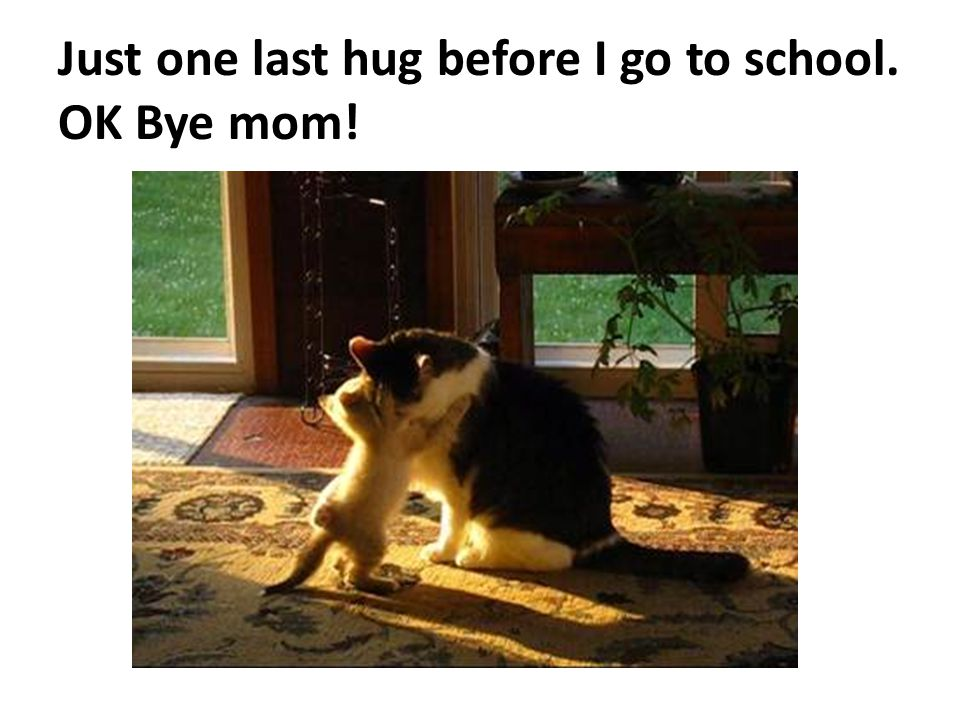 Just one last hug before I go to school. OK Bye mom!