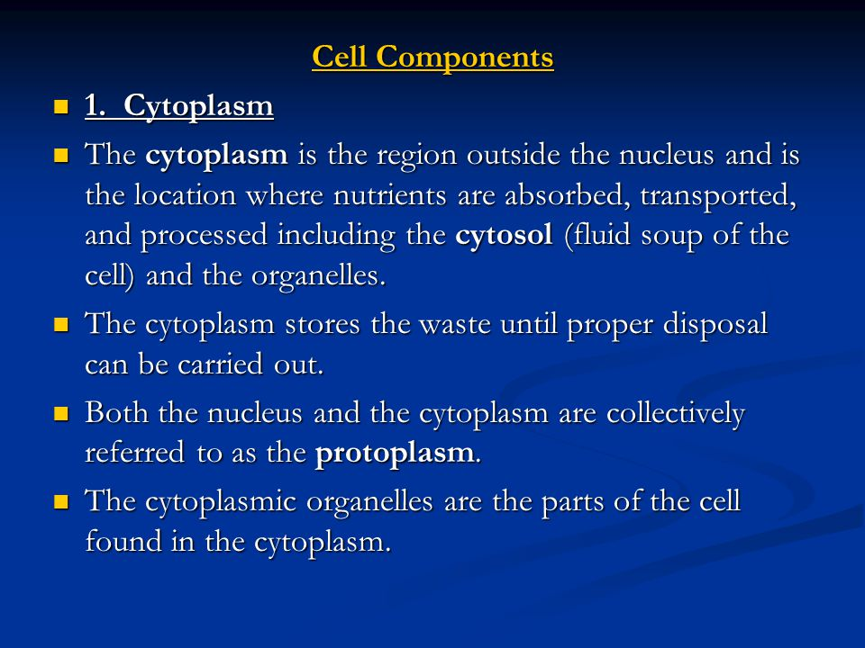 12.Cell Wall Most plant cells are surrounded by a non-living cell wall.