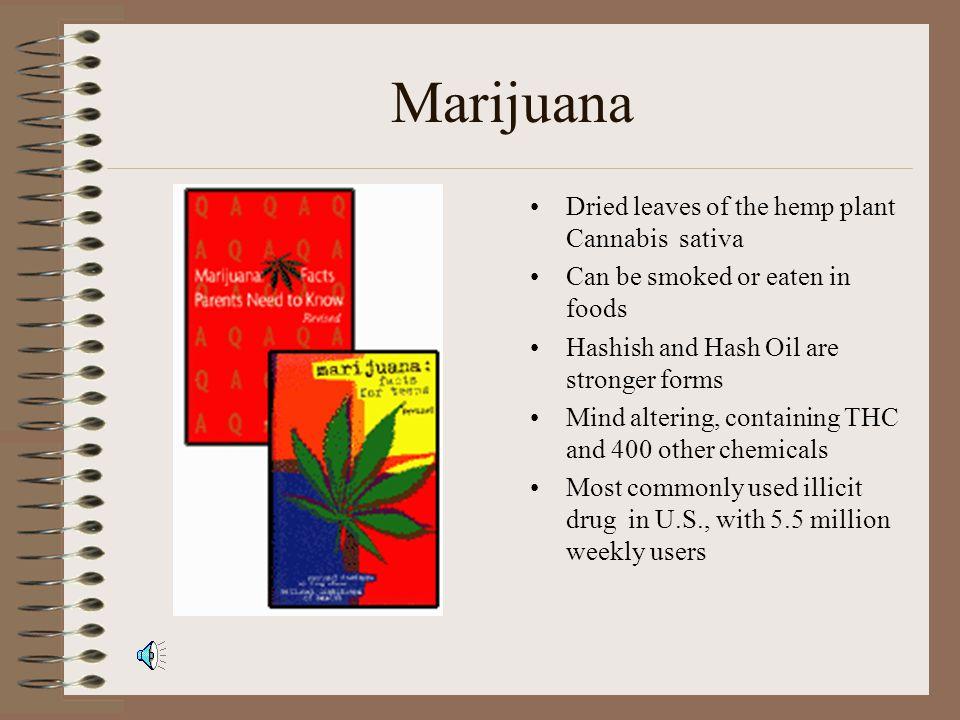 Marijuana 101