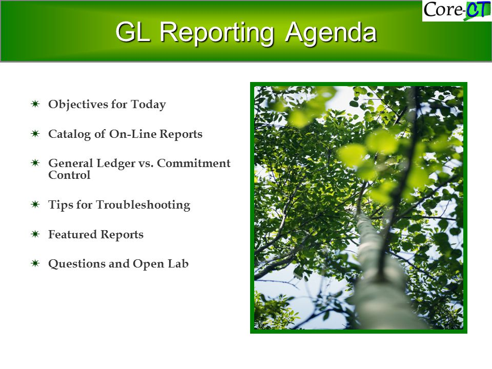 GL Reporting Agenda  Objectives for Today  Catalog of On-Line Reports  General Ledger vs.