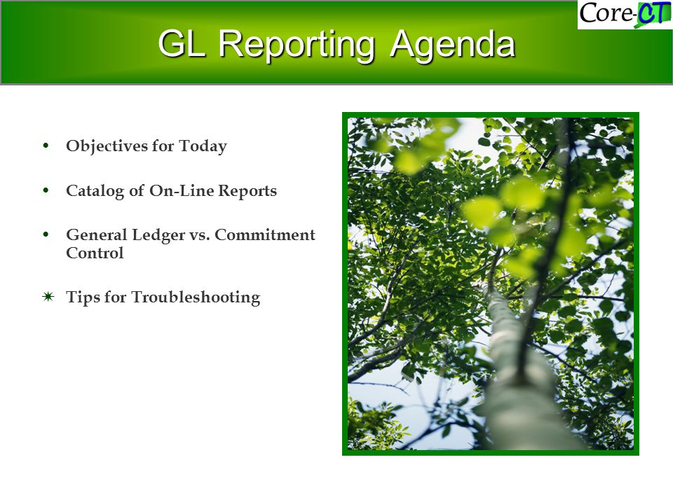 GL Reporting Agenda Objectives for Today Catalog of On-Line Reports General Ledger vs.