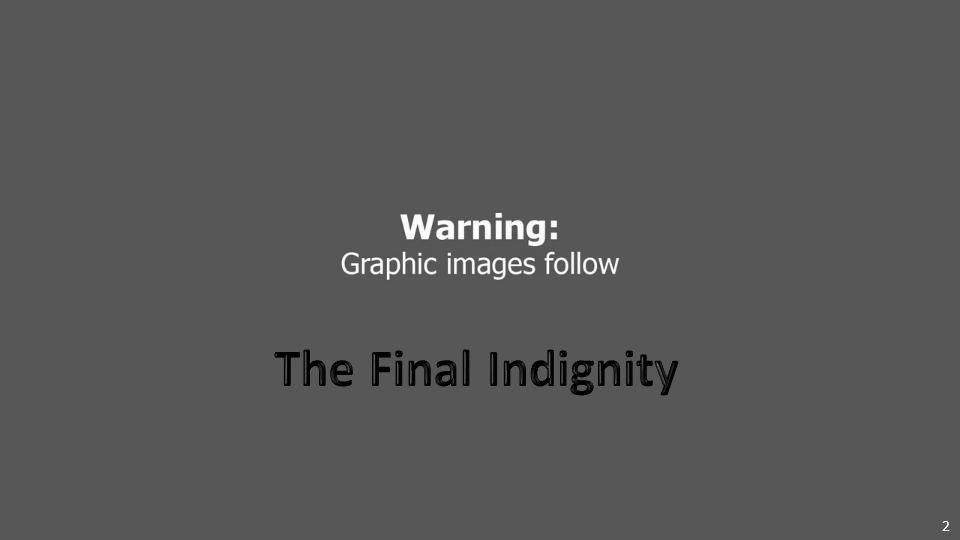 1 MH17: The Tragic Journey