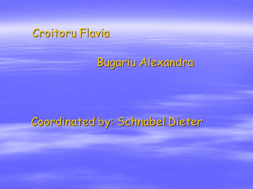 Croitoru Flavia Croitoru Flavia Bugariu Alexandra Bugariu Alexandra Coordinated by: Schnabel Dieter
