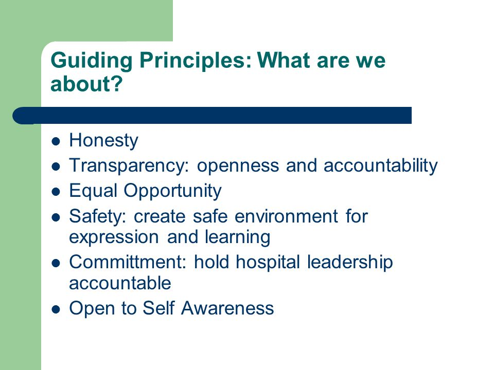 Guiding Principles: What are we about.