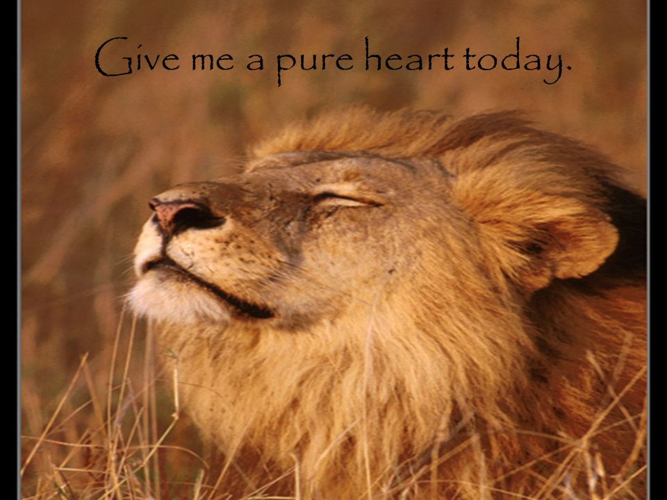 Give me a pure heart today.