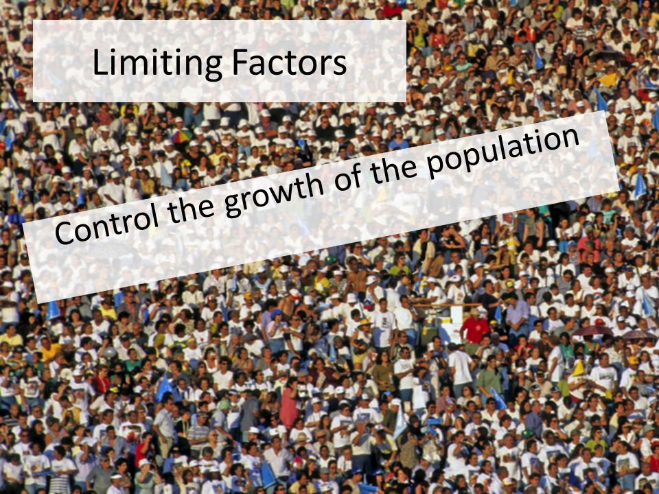Limiting Factors Control the growth of the population