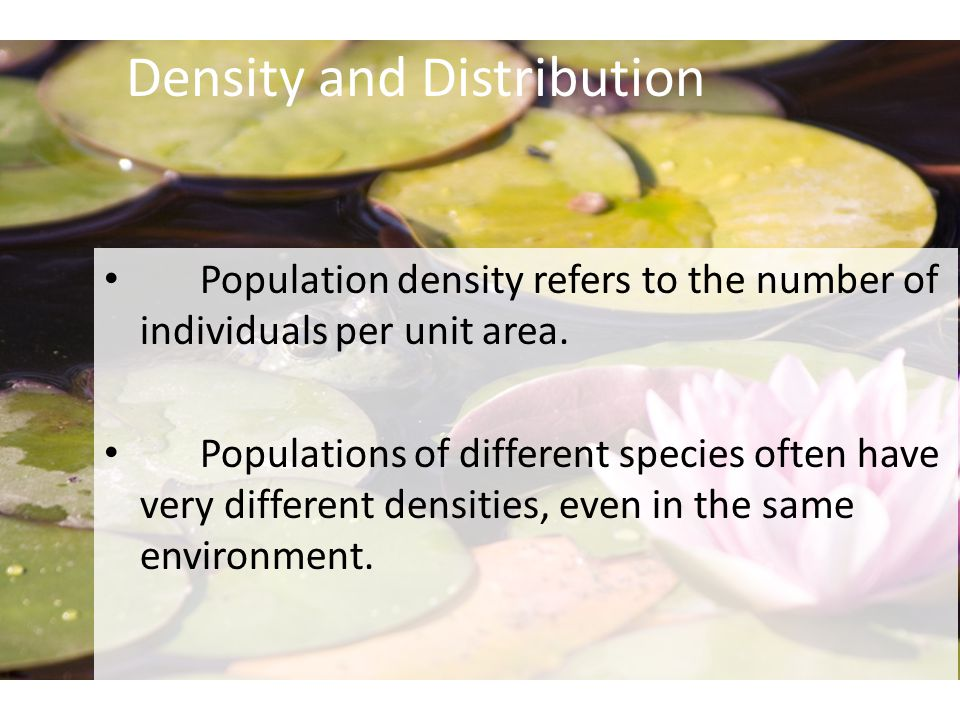 Density and Distribution Population density refers to the number of individuals per unit area.