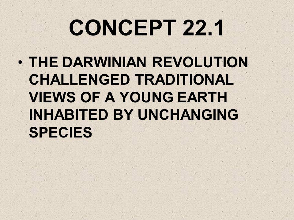 EVIDENCE FOR EVOLUTION DIRECT OBSERVATION EX.