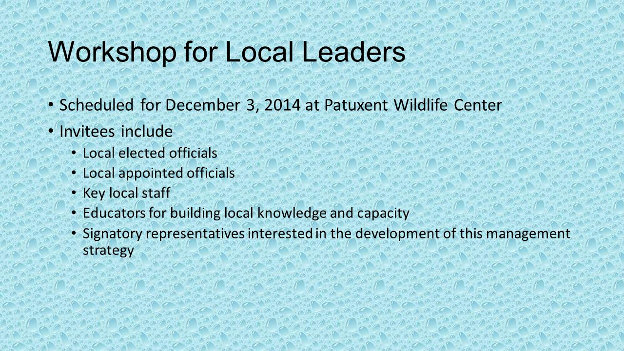 Workshop for Local Leaders Scheduled for December 3, 2014 at Patuxent Wildlife Center Invitees include Local elected officials Local appointed officials Key local staff Educators for building local knowledge and capacity Signatory representatives interested in the development of this management strategy