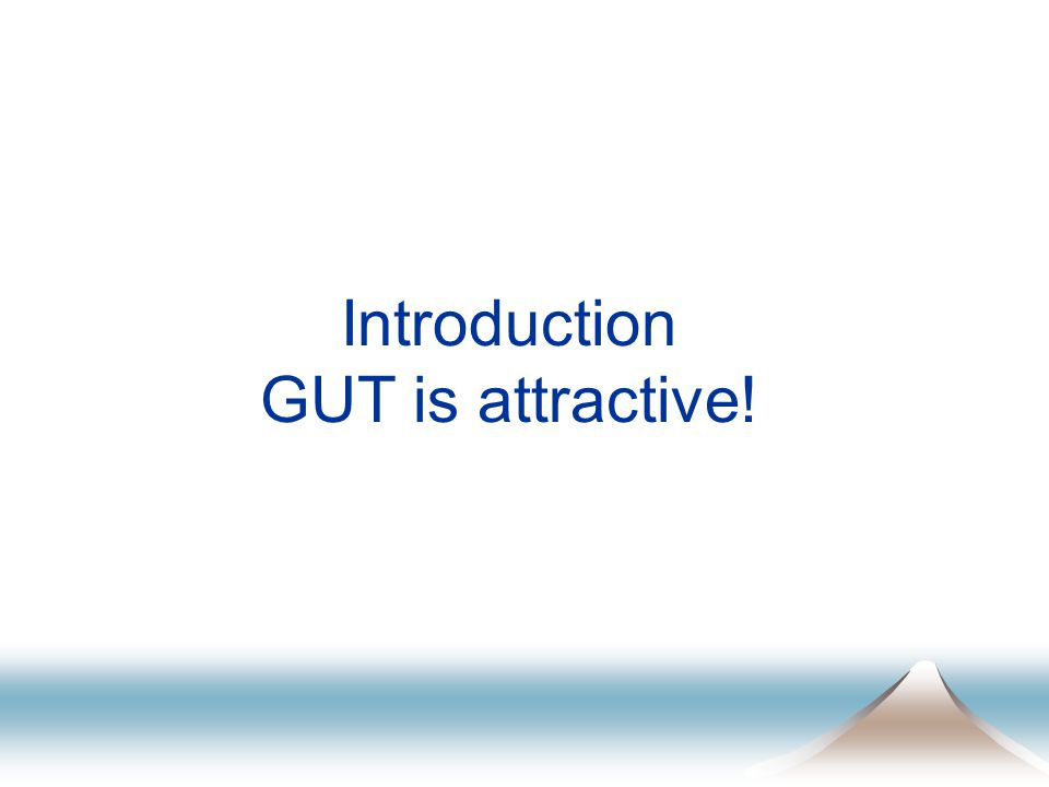 Introduction GUT is attractive!