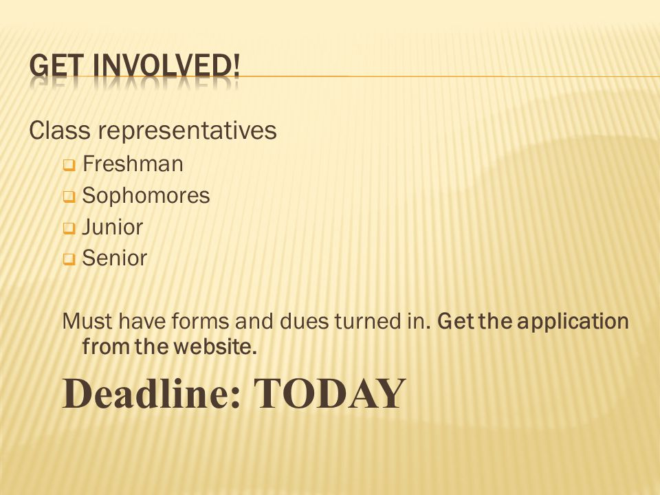 Class representatives  Freshman  Sophomores  Junior  Senior Must have forms and dues turned in.