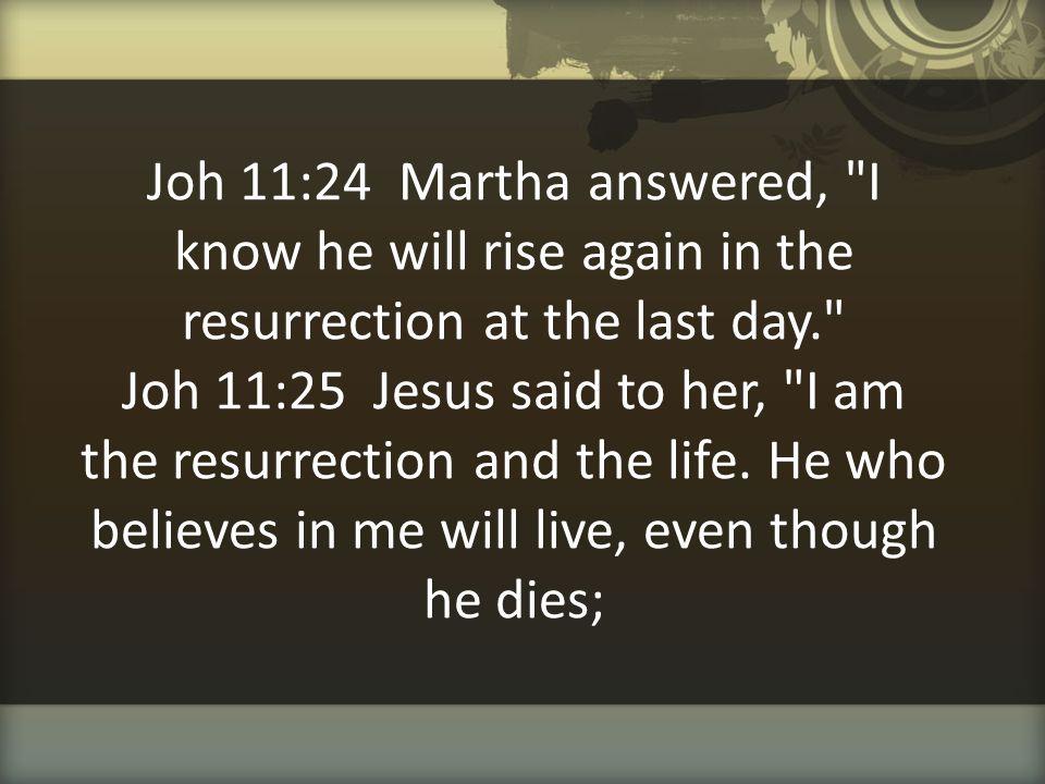 Joh 11:24 Martha answered,
