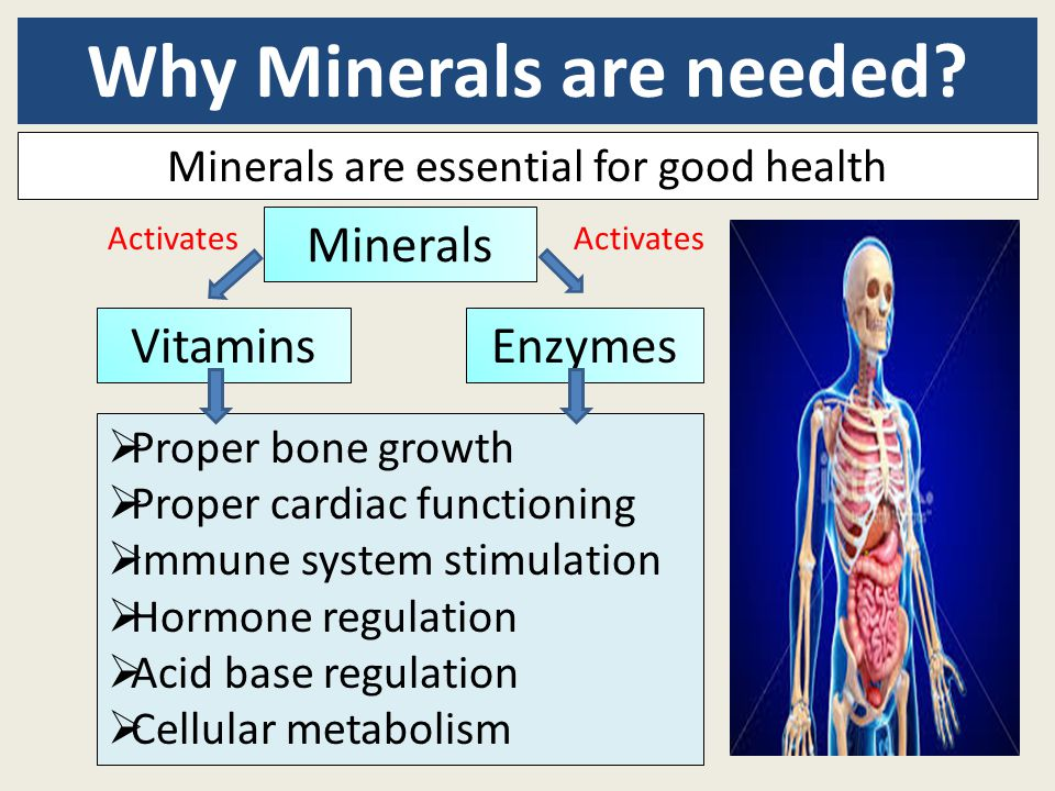 Why Minerals are needed? Minerals are essential for good health  Proper bone growth  Proper cardiac functioning  Immune system stimulation  Hormon