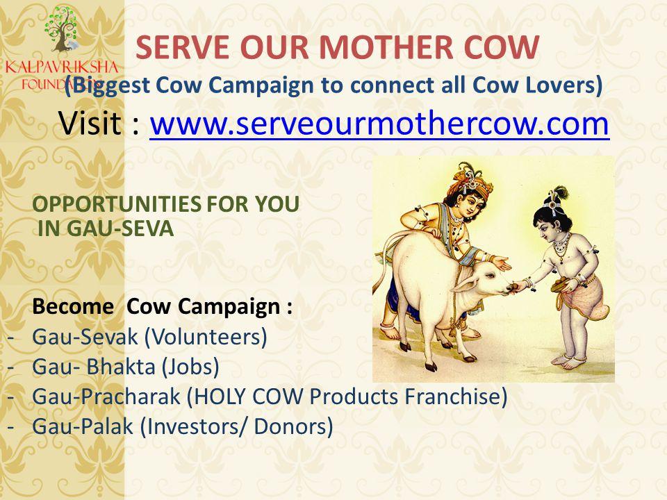 SERVE OUR MOTHER COW (Biggest Cow Campaign to connect all Cow Lovers) Visit : www.serveourmothercow.comwww.serveourmothercow.com OPPORTUNITIES FOR YOU IN GAU-SEVA Become Cow Campaign : -Gau-Sevak (Volunteers) -Gau- Bhakta (Jobs) -Gau-Pracharak (HOLY COW Products Franchise) -Gau-Palak (Investors/ Donors)