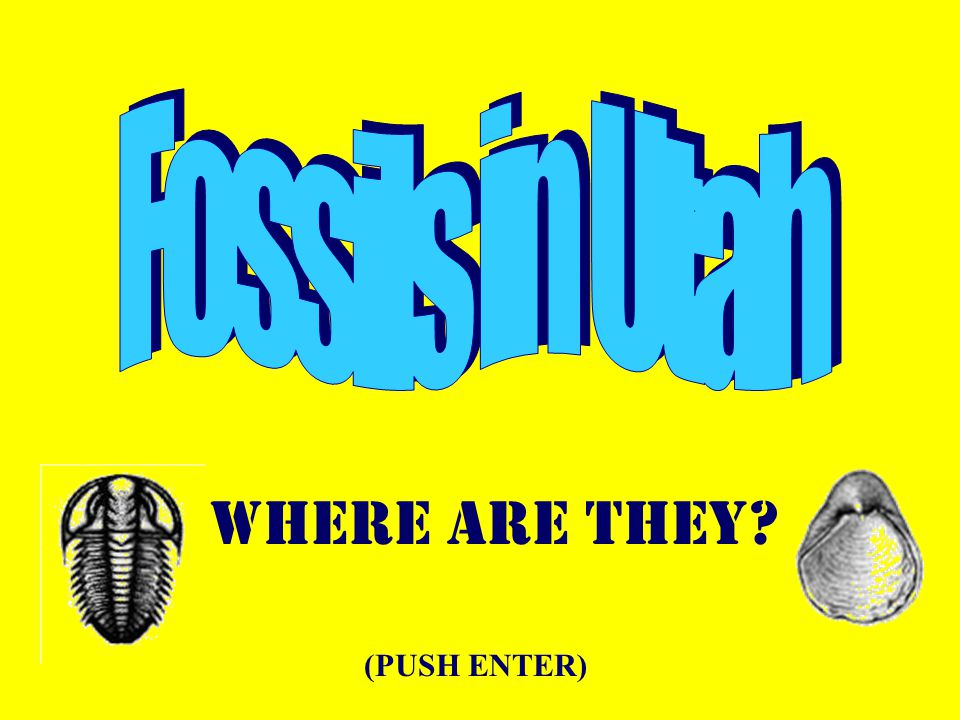 Where are they? (PUSH ENTER)