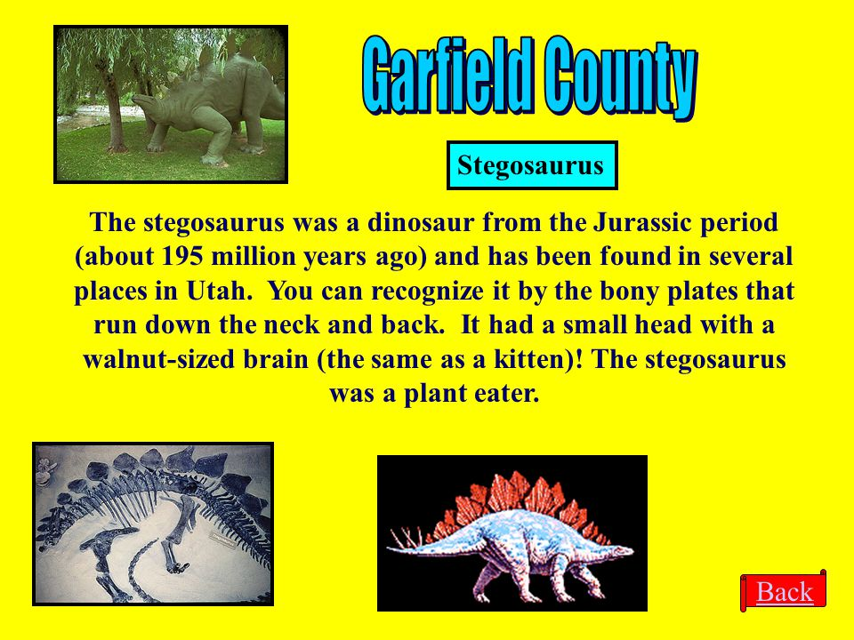 Back The stegosaurus was a dinosaur from the Jurassic period (about 195 million years ago) and has been found in several places in Utah. You can recog