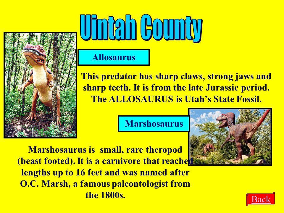 Allosaurus Marshosaurus This predator has sharp claws, strong jaws and sharp teeth. It is from the late Jurassic period. The ALLOSAURUS is Utah's Stat