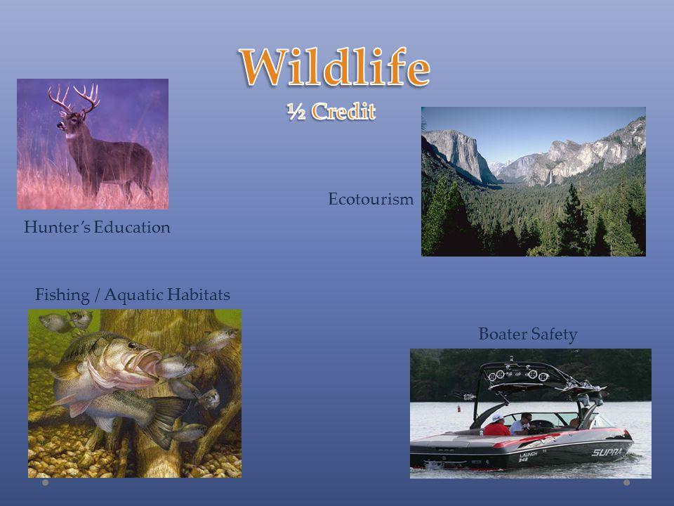 Hunter's Education Fishing / Aquatic Habitats Boater Safety Ecotourism