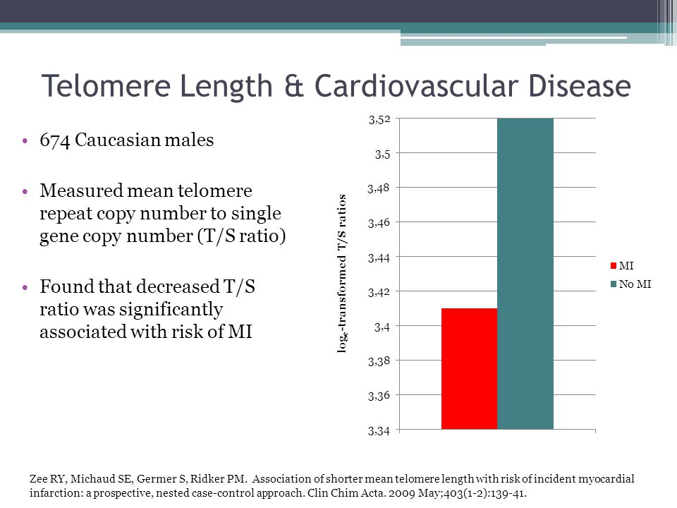 Telomere Length & Cardiovascular Disease 674 Caucasian males Measured mean telomere repeat copy number to single gene copy number (T/S ratio) Found that decreased T/S ratio was significantly associated with risk of MI log e -transformed T/S ratios Zee RY, Michaud SE, Germer S, Ridker PM.