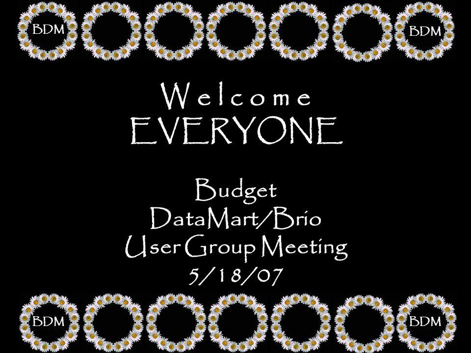 W e l c o m e EVERYONE Budget DataMart/Brio User Group Meeting 5/18/07 BDM