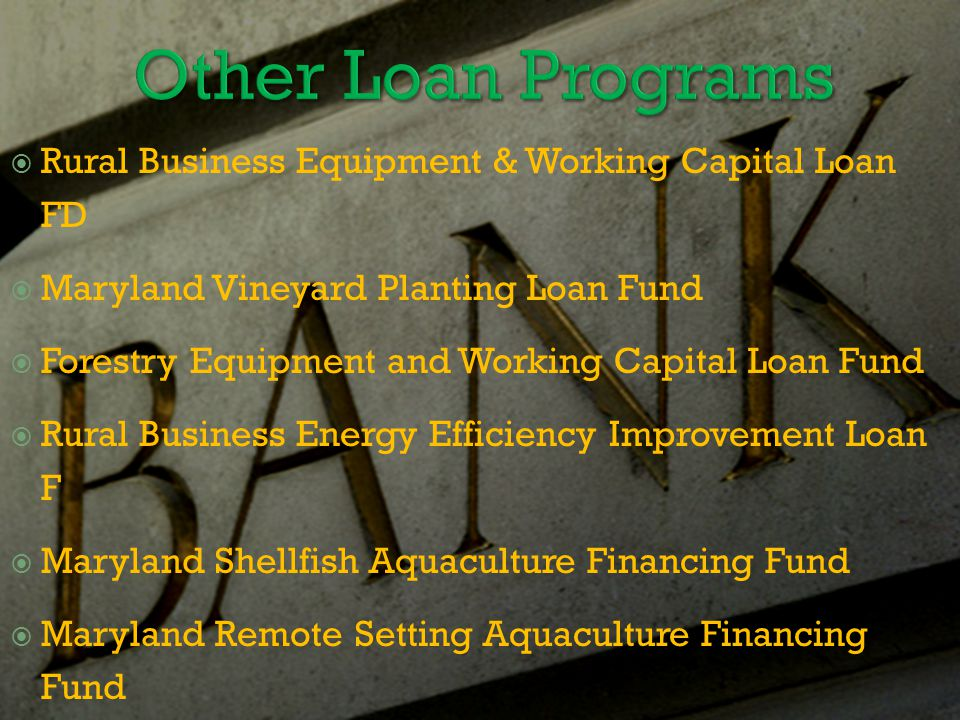  Rural Business Equipment & Working Capital Loan FD  Maryland Vineyard Planting Loan Fund  Forestry Equipment and Working Capital Loan Fund  Rural Business Energy Efficiency Improvement Loan F  Maryland Shellfish Aquaculture Financing Fund  Maryland Remote Setting Aquaculture Financing Fund  Agricultural Cooperatives Equity Investment Fund