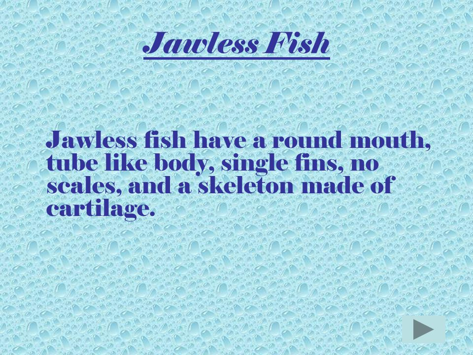 Classes of Fish 1.JawlessJawless 2.CartilageCartilage 3.BonyBony