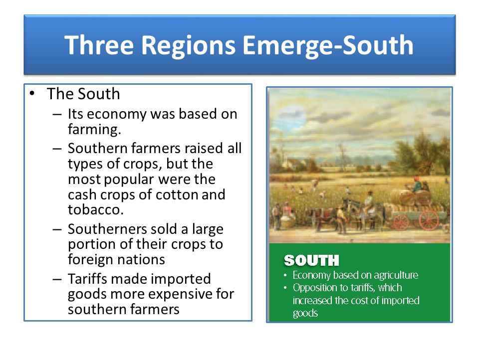 Three Regions Emerge-South The South – Its economy was based on farming. – Southern farmers raised all types of crops, but the most popular were the c