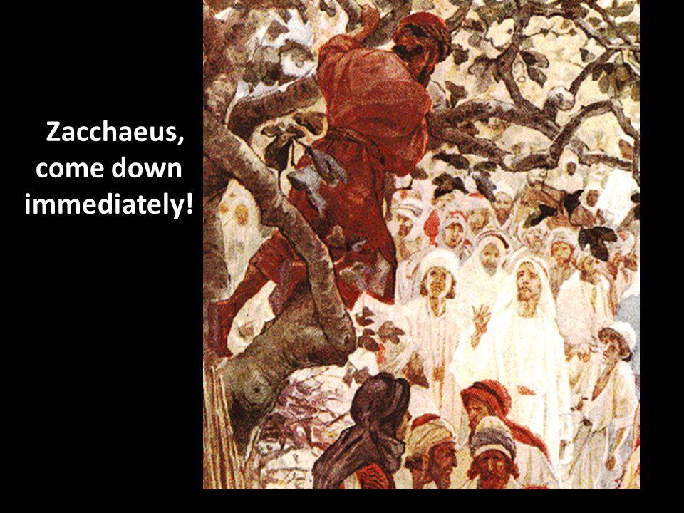 Zacchaeus, come down immediately!