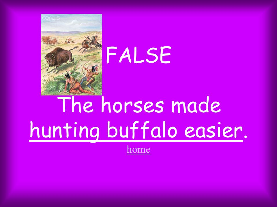 FALSE The horses made hunting buffalo easier. home home