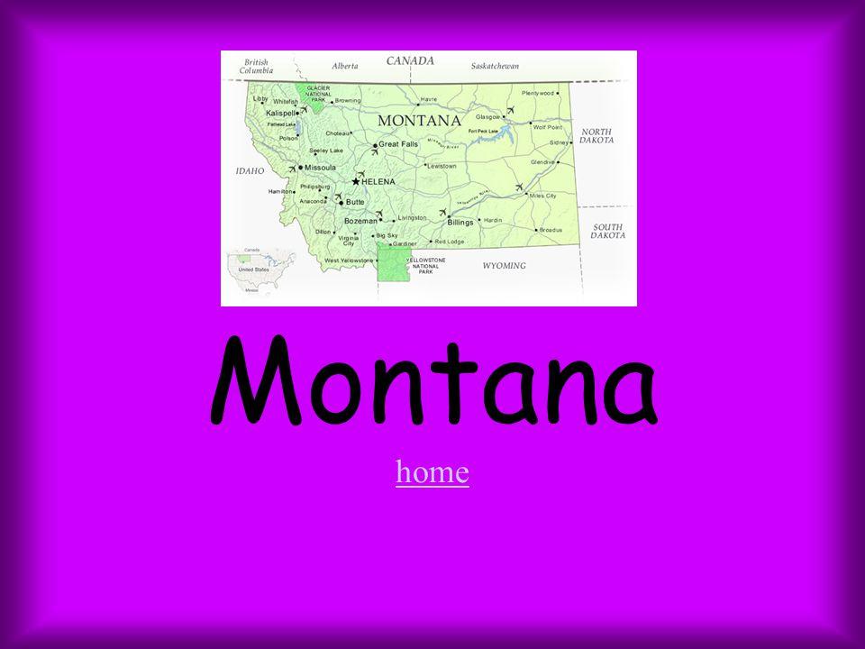 Montana home home