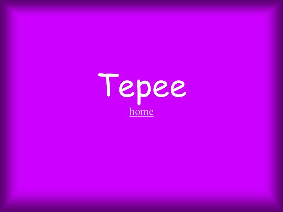 Tepee home home