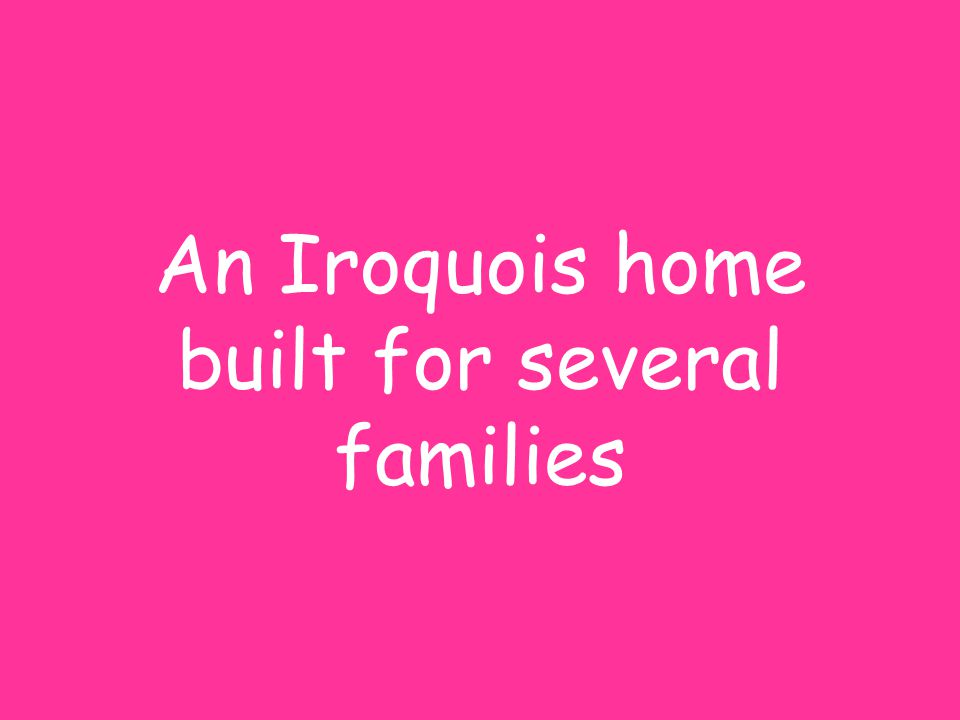 An Iroquois home built for several families
