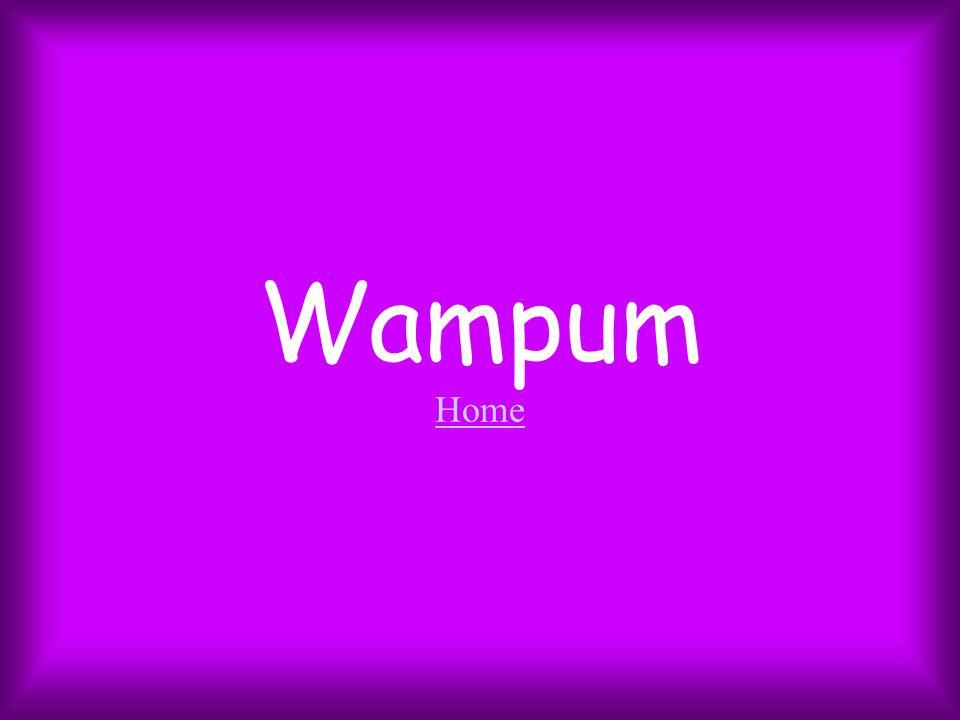 Wampum Home Home