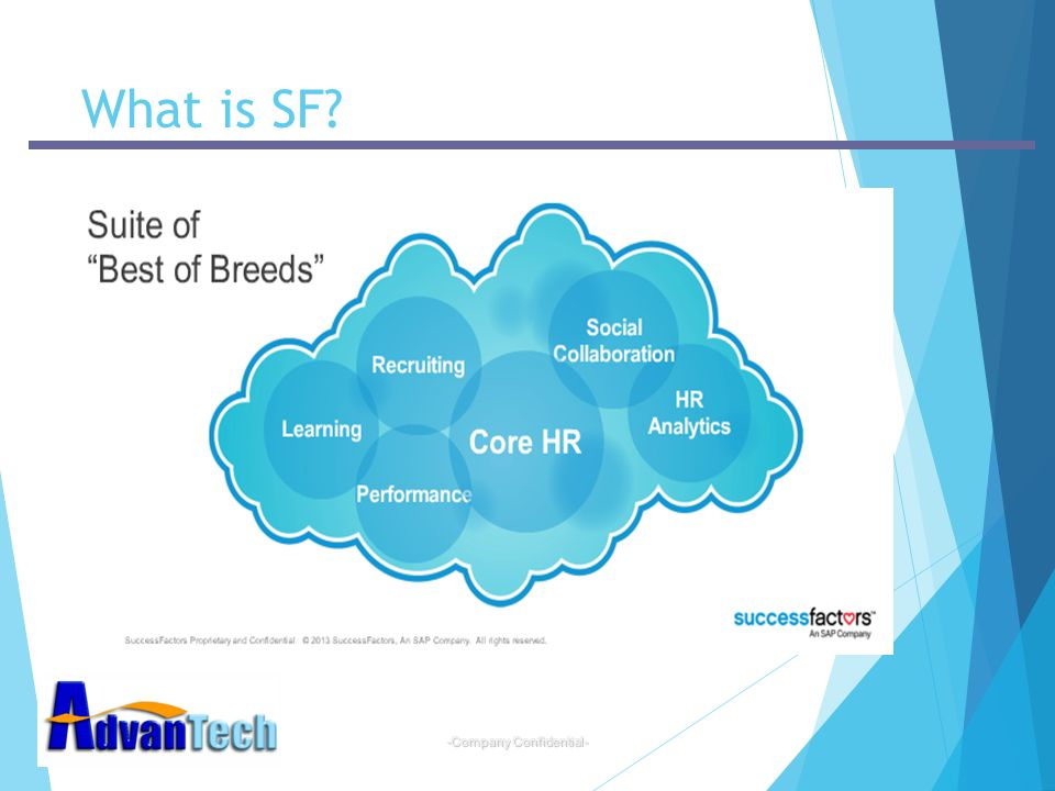 -Company Confidential- What is SF?