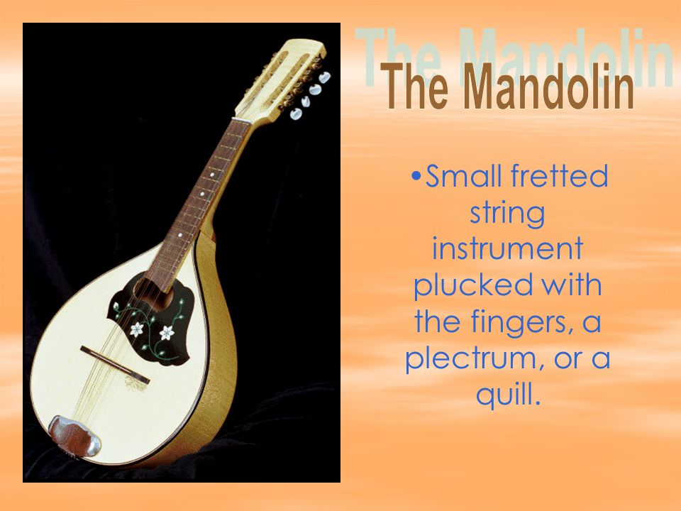 Small fretted string instrument plucked with the fingers, a plectrum, or a quill.