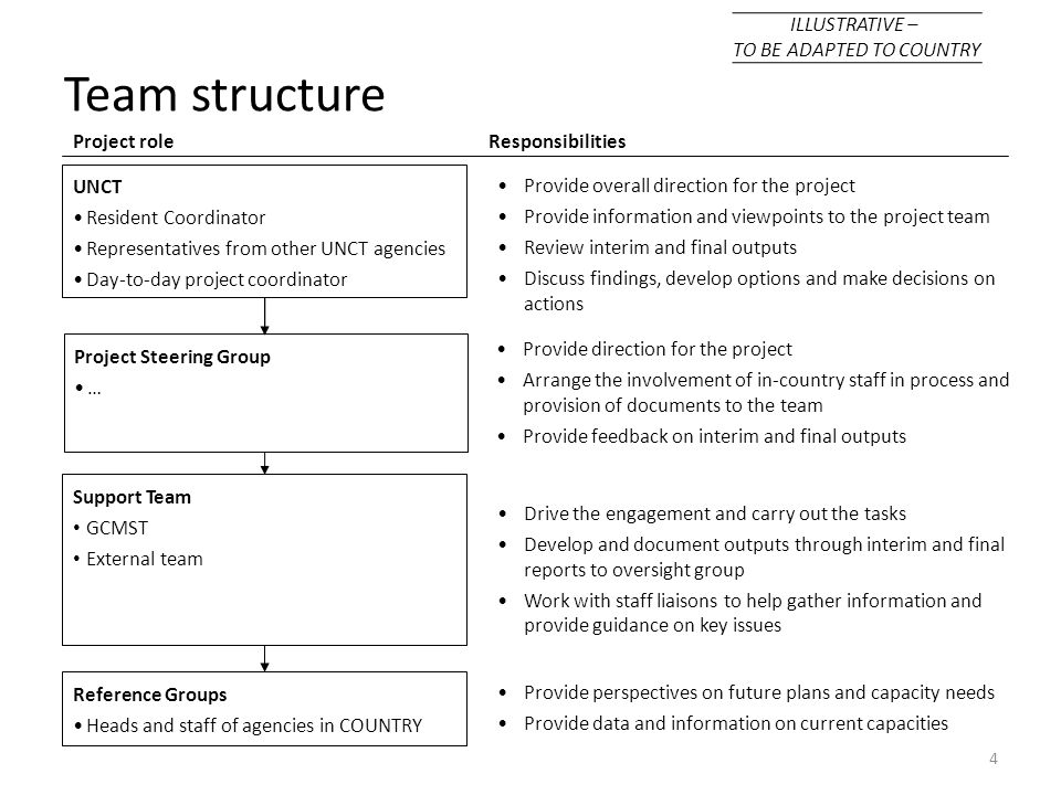 4 Project roleResponsibilities Provide overall direction for the project Provide information and viewpoints to the project team Review interim and fin