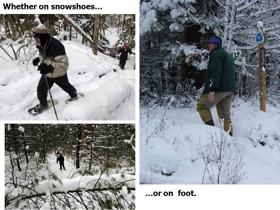 …or on foot. Whether on snowshoes…
