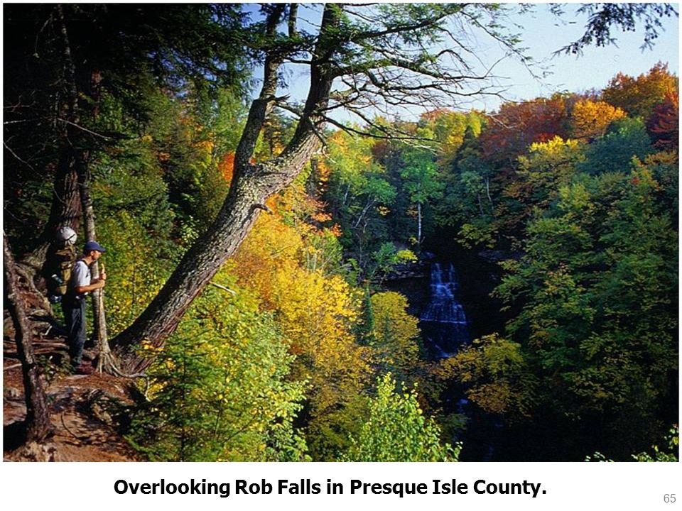 65 Overlooking Rob Falls in Presque Isle County.