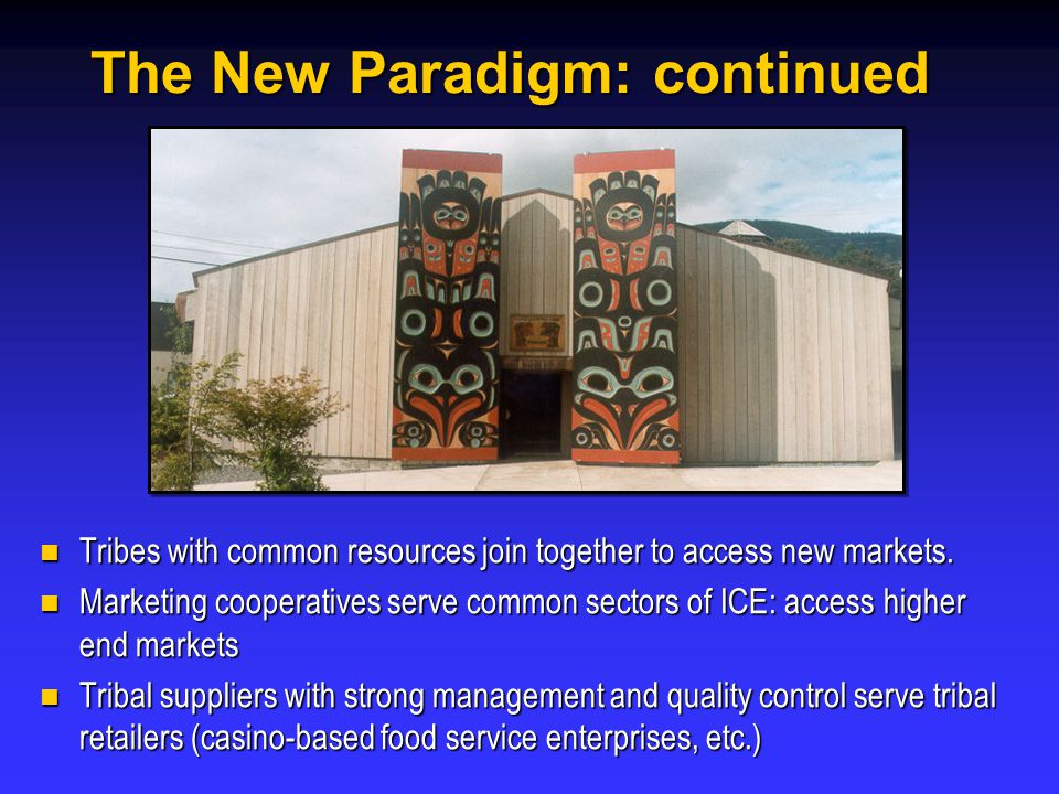 The New Paradigm: continued Tribes with common resources join together to access new markets.