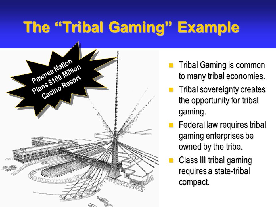The Tribal Gaming Example Tribal Gaming is common to many tribal economies.