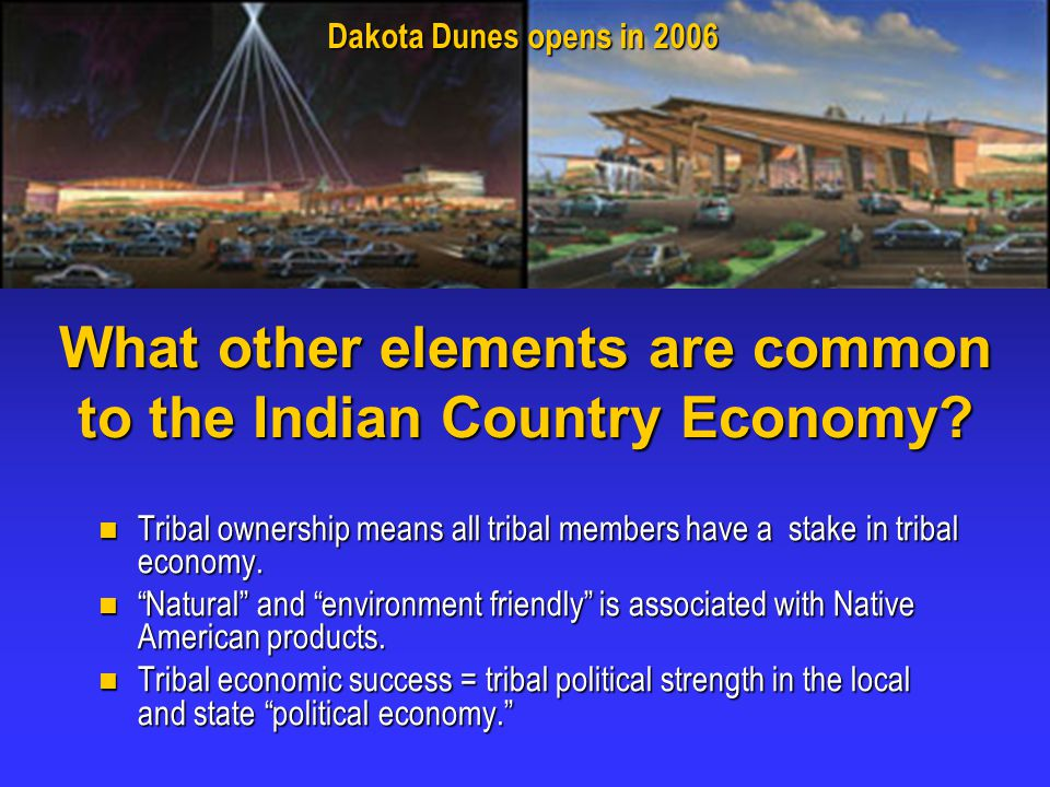 What other elements are common to the Indian Country Economy.