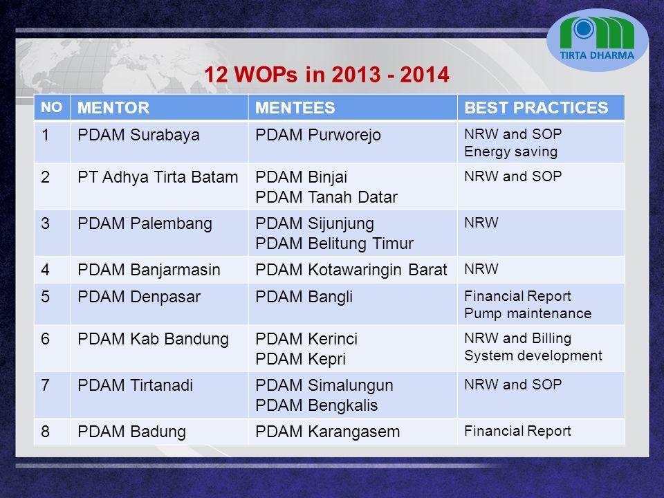 LOGO NO MENTORMENTEESBEST PRACTICES 1PDAM SurabayaPDAM Purworejo NRW and SOP Energy saving 2PT Adhya Tirta BatamPDAM Binjai PDAM Tanah Datar NRW and S
