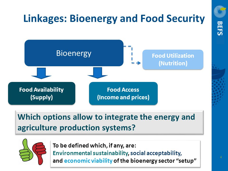 4 Linkages: Bioenergy and Food Security Bioenergy Food Availability (Supply) Food Availability (Supply) Food Access (Income and prices) Food Utilizati