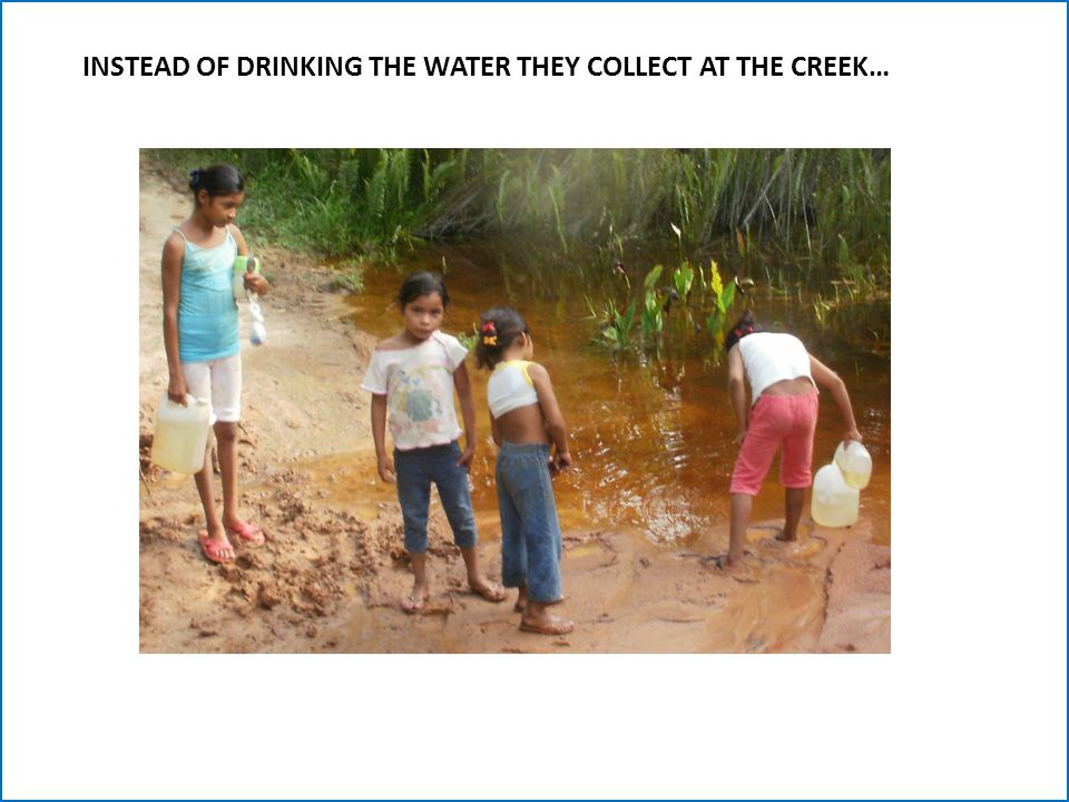 INSTEAD OF DRINKING THE WATER THEY COLLECT AT THE CREEK…