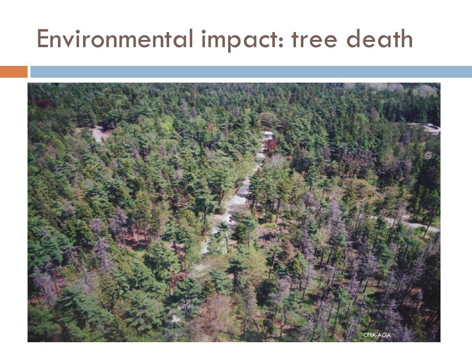 Environmental impact: tree death CFIA-ACIA