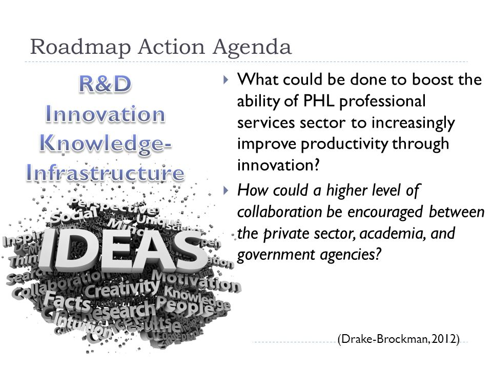 Roadmap Action Agenda  What could be done to boost the ability of PHL professional services sector to increasingly improve productivity through innovation.