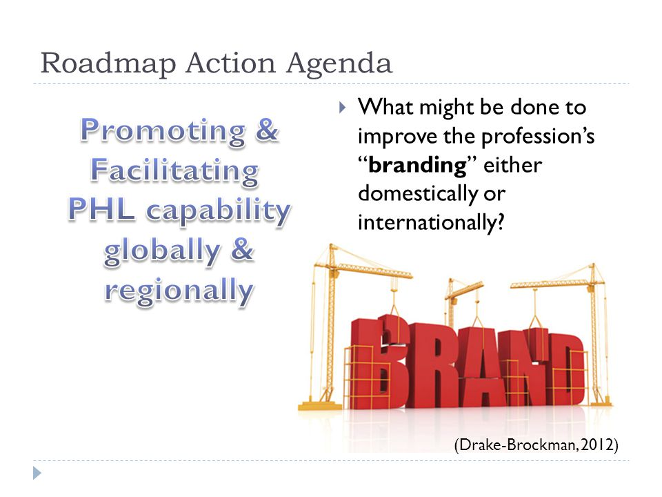 Roadmap Action Agenda  What might be done to improve the profession's branding either domestically or internationally.