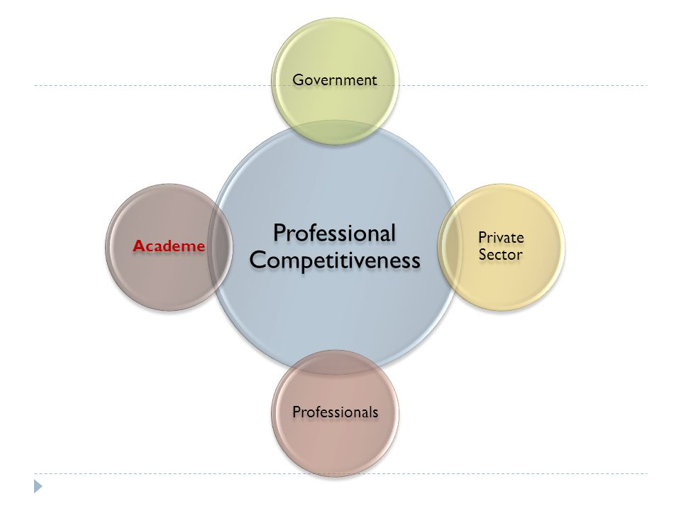 Professional Competitiveness Government Private Sector ProfessionalsAcademe