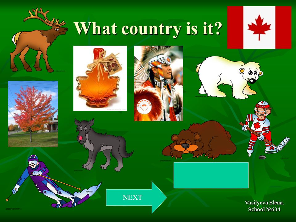 What country is it Vasilyeva Elena. School №634 NEXT Canada