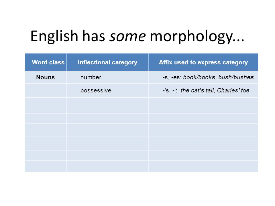 English has some morphology... Word classInflectional categoryAffix used to express category Nounsnumber-s, -es: book/books, bush/bushes possessive-'s